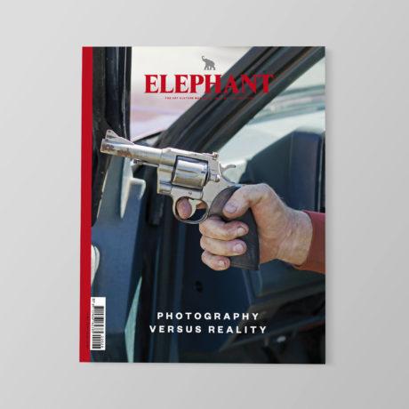 Elephant 28 - Photography vs Reality