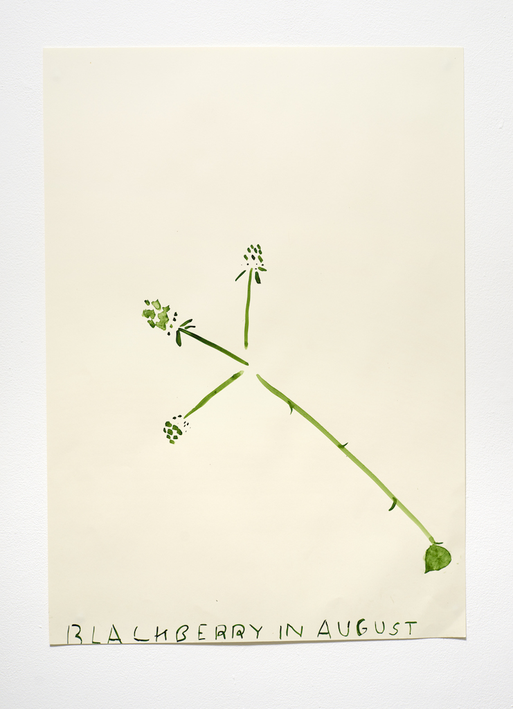 Rose Wylie, Blackberry (Minimal), 2015, Watercolour on paper, 84 x 60 cm, Courtesy Union Gallery, Breese Little