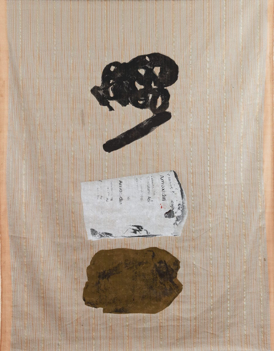 Shoelace, Pharmaceutical Strip and Cellophane Containing Earth, 2017