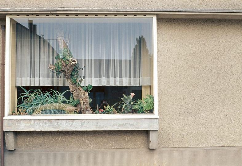 Luigi Ghirri, Images from Colazione sull'Erba (MACK, 2019). Courtesy the estate of the artist and MACK