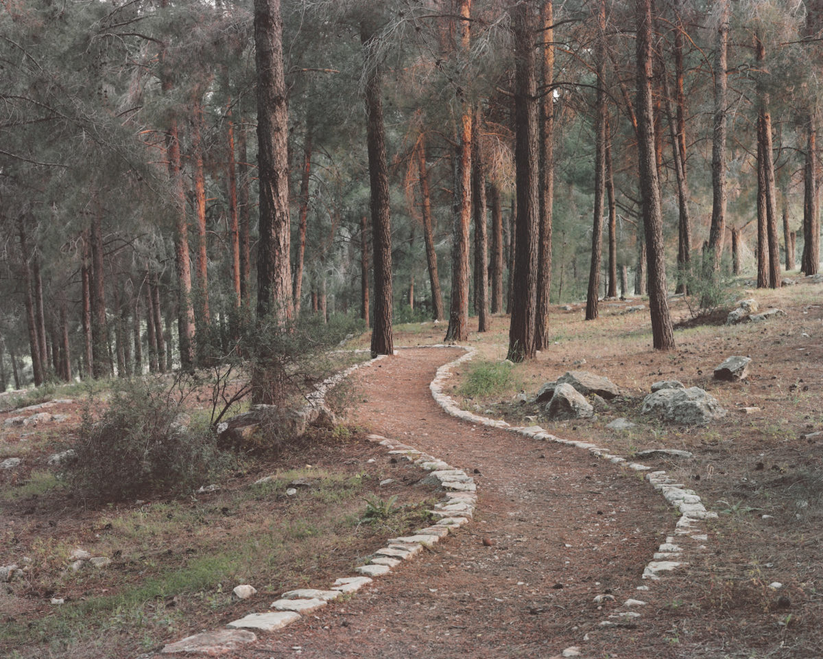 Roei Greenberg, Stone Carved Trail, 2018