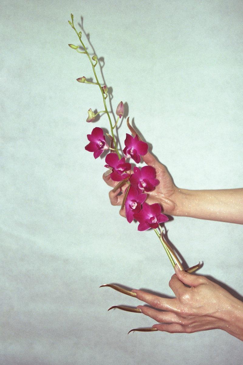 Floral Extension 1 copy