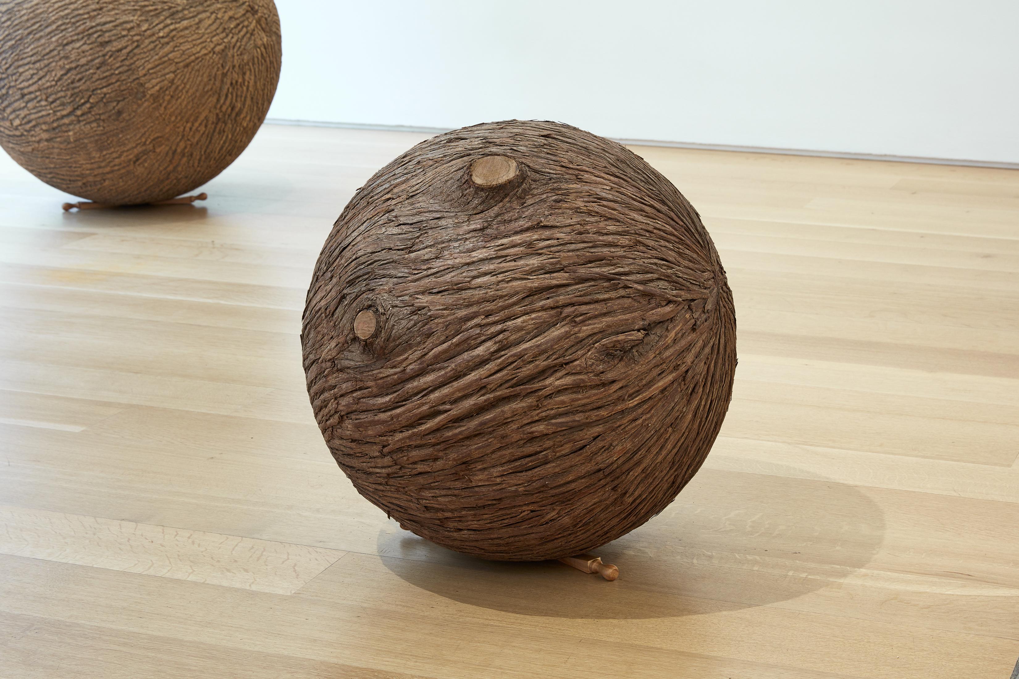 Treeball (Cedar) lars fisk