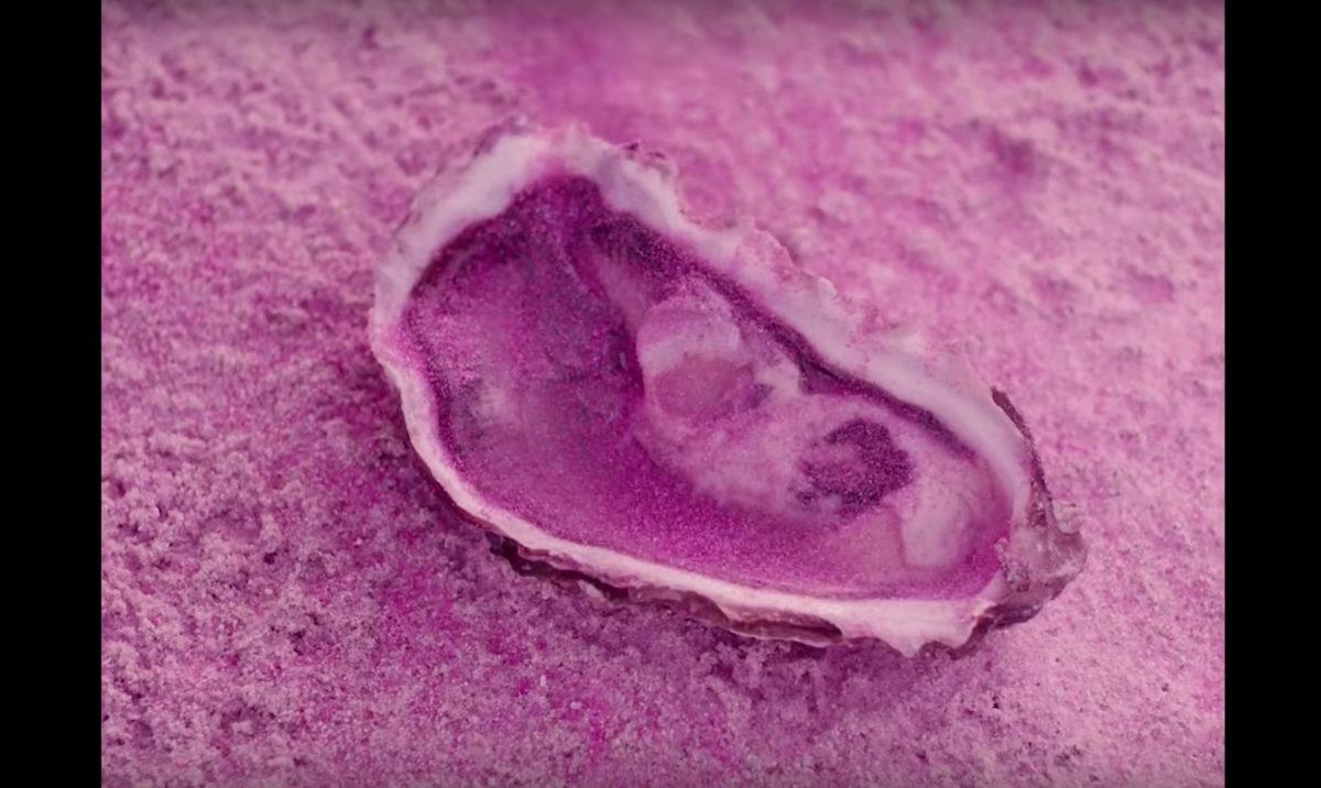 Janelle Monáe, Still from PYNK, 2018. Directed by Emma Westenberg