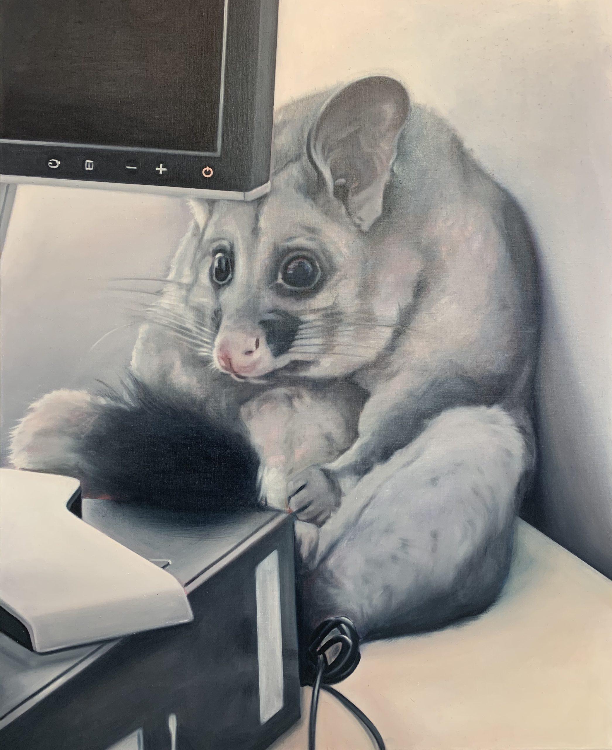 Lydia Blakeley, Guilty Possum, 2020
