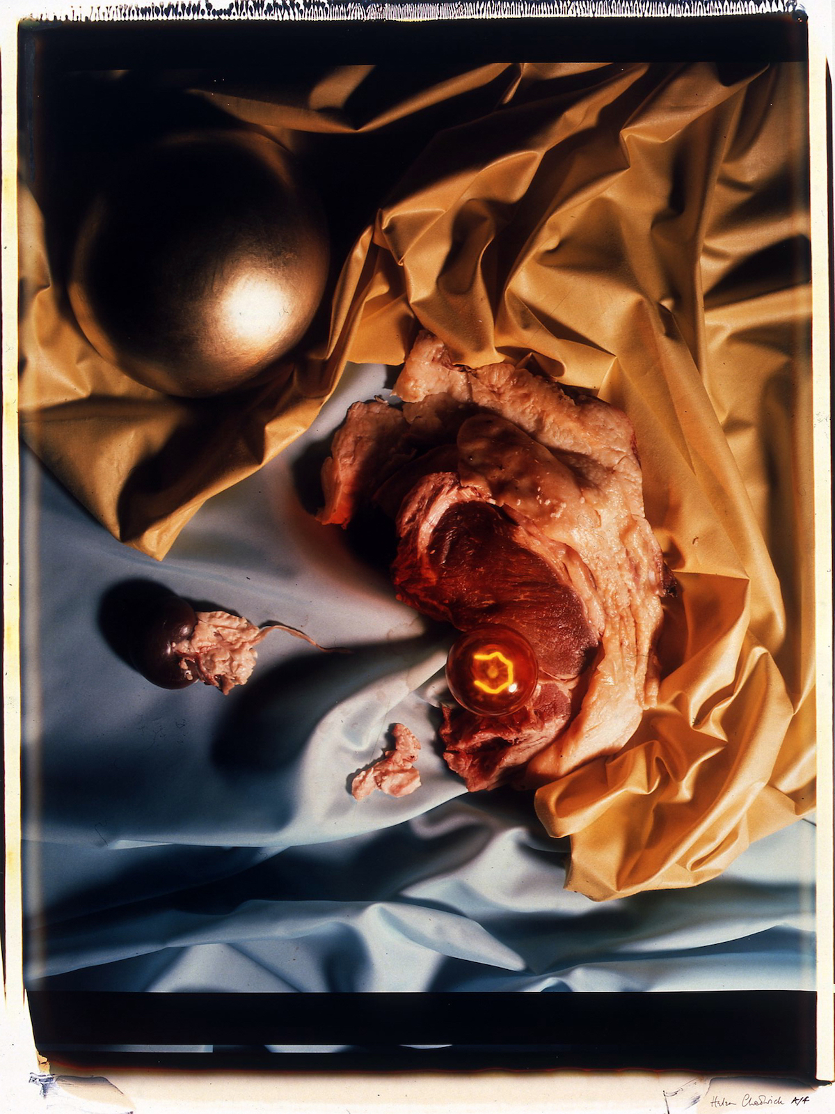 Helen Chadwick, Meat Abstract No. 8, Gold Ball Steak, 1989. Copyright The Artist. Courtesy of Richard Saltoun Gallery.