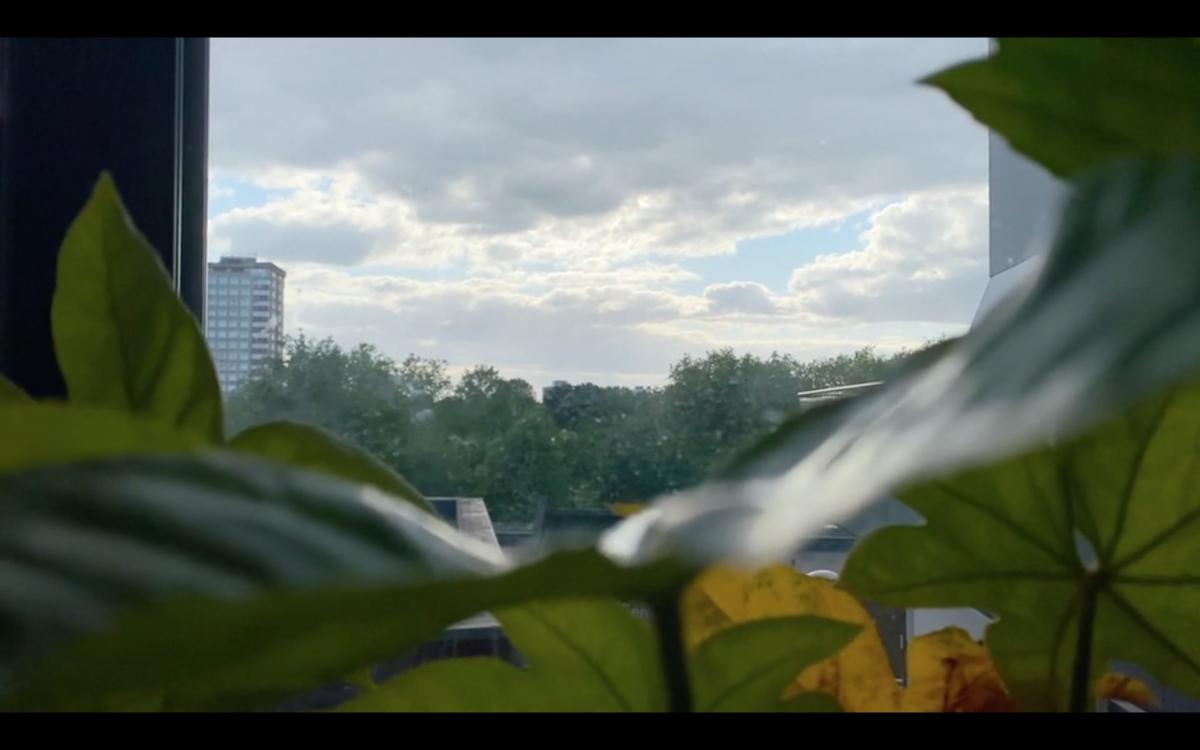 Screen Shot 2020-08-27 at 14.06.56