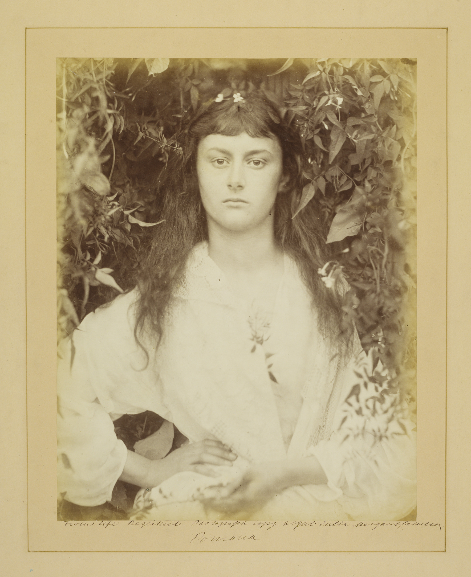 Photograph of the 'real' Alice Liddell, by Julia Margaret Cameron, 'Pomona', albumen print, 1872 © Victoria and Albert Museum, London