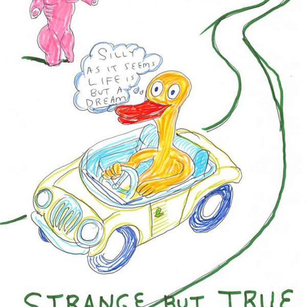 Daniel Johnston, Strange But True, 1997