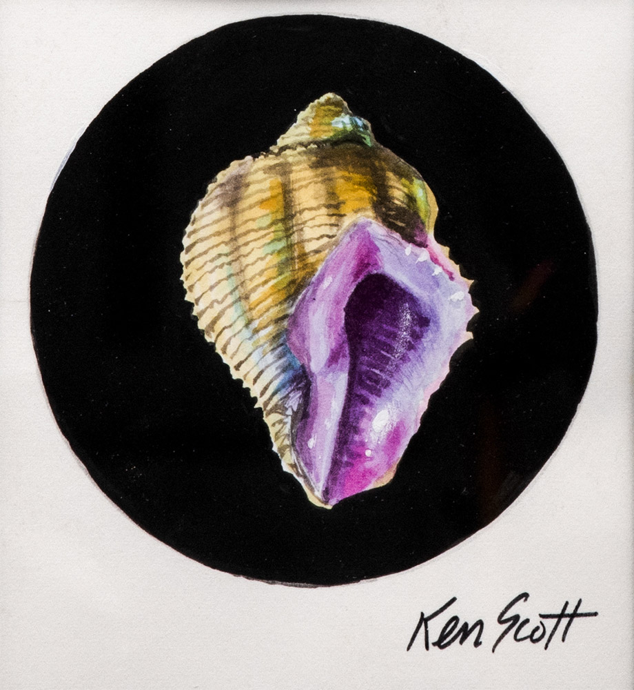 From the Ken Scott Archive. Ken Scott is brand of Mantero