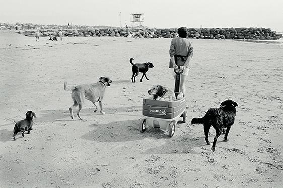 David Hurn, San Diego, USA, 2002. © 2021 David Hurn/Magnum Photo. Courtesy Thames & Hudson