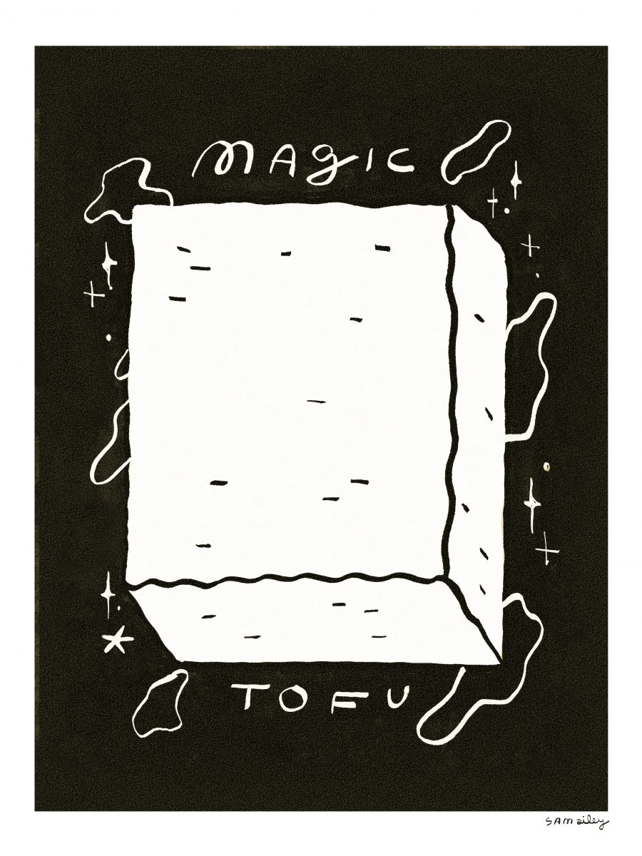 Sam Ailey, Magic Tofu, 2021
