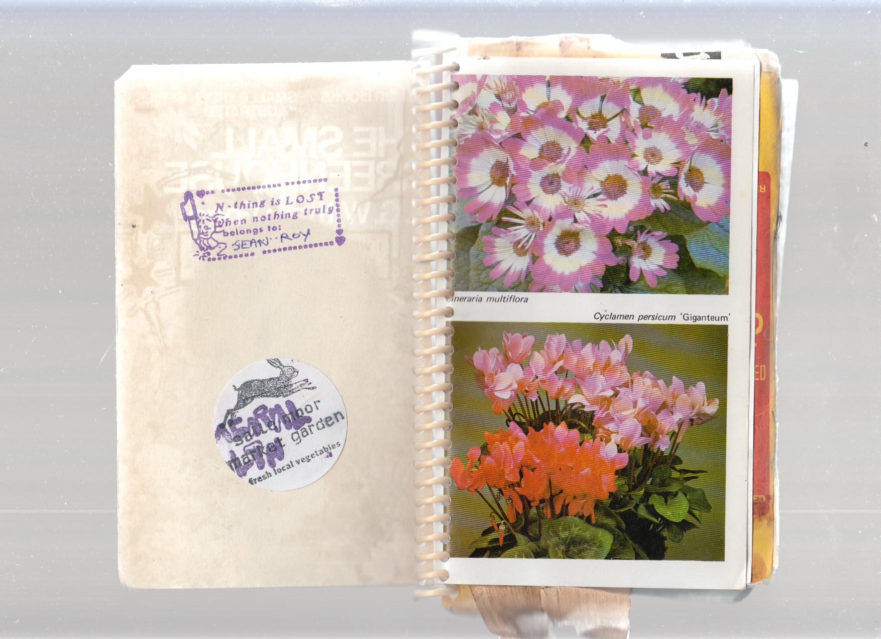 Reciprocity Residency scrapbook. Image via Fermental Health