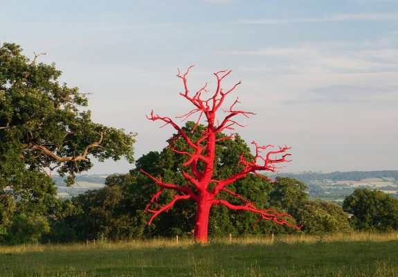 Artwork (Red Tree) at Croft Castle, Herefordshire, by Philippa Lawrence
