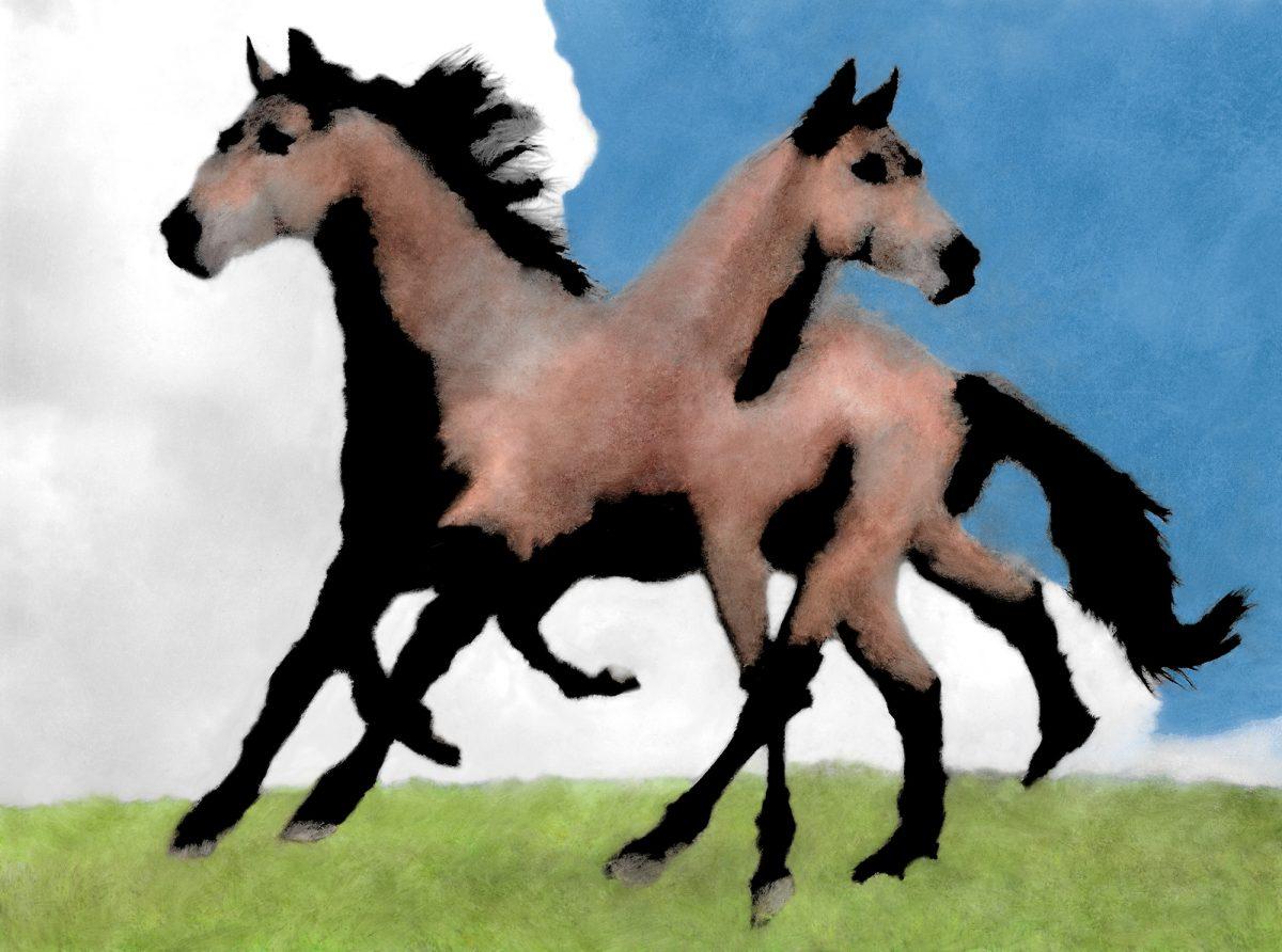 Gregory Eddi Jones, Janus Horse in Motion