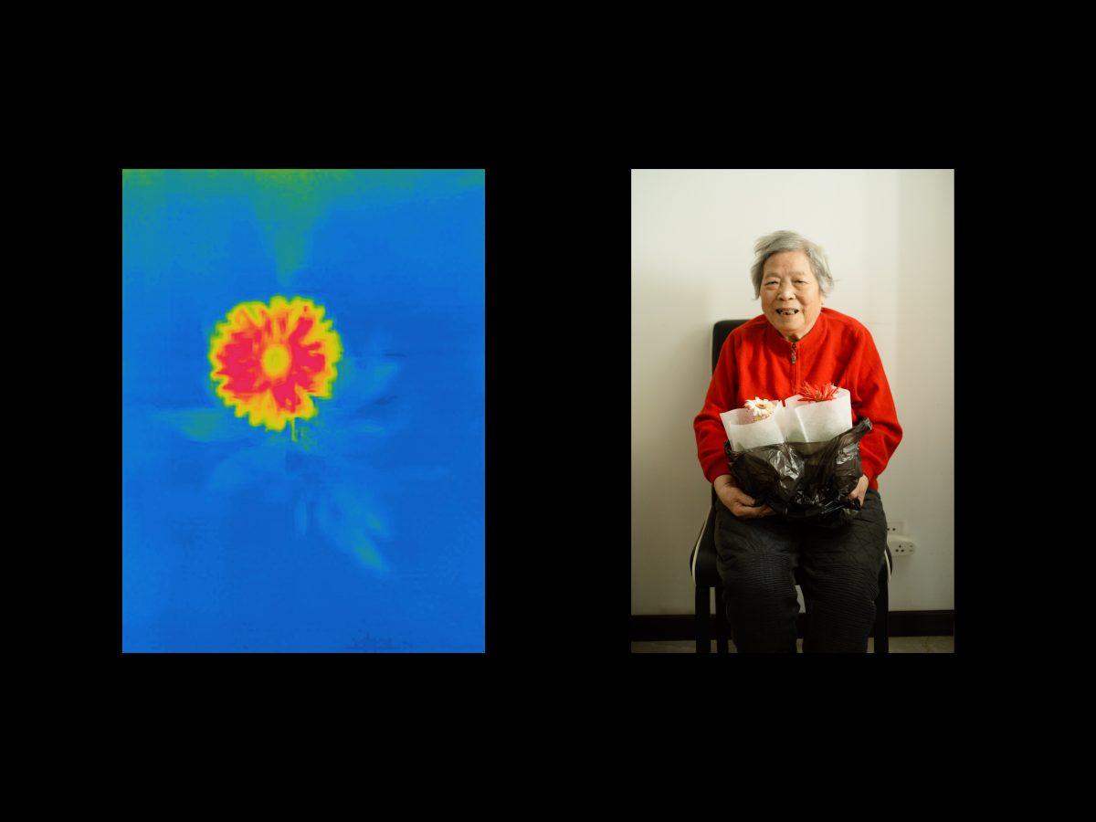 Yufan Lu, Grandma, 2020